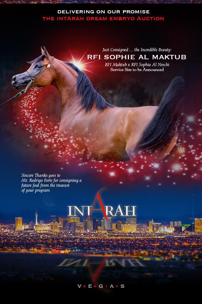 IntArah Dream ... RFI Sophie Al Maktub