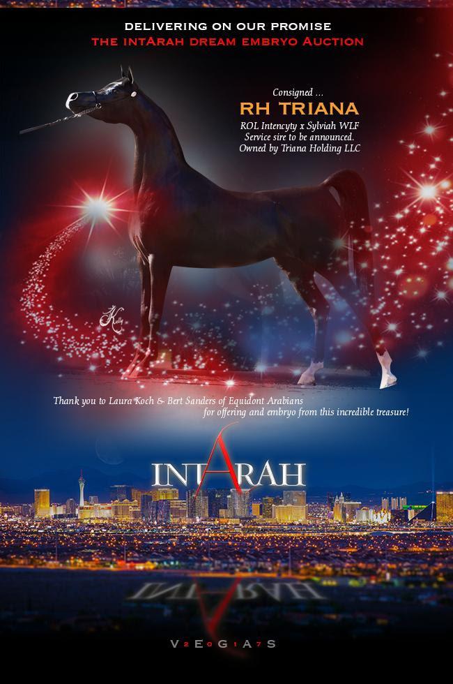 IntArah Dream ... RH Triana
