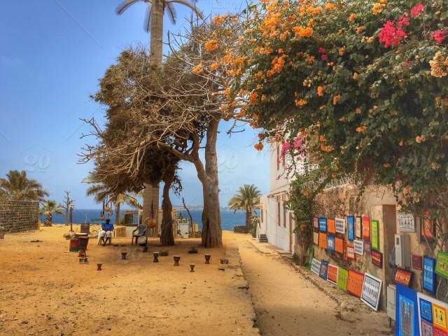 stock-photo-travel-island-africa-senegal-blogger-worldtripsluca-f125465e-2d96-446c-8347-d8ffab1bf316
