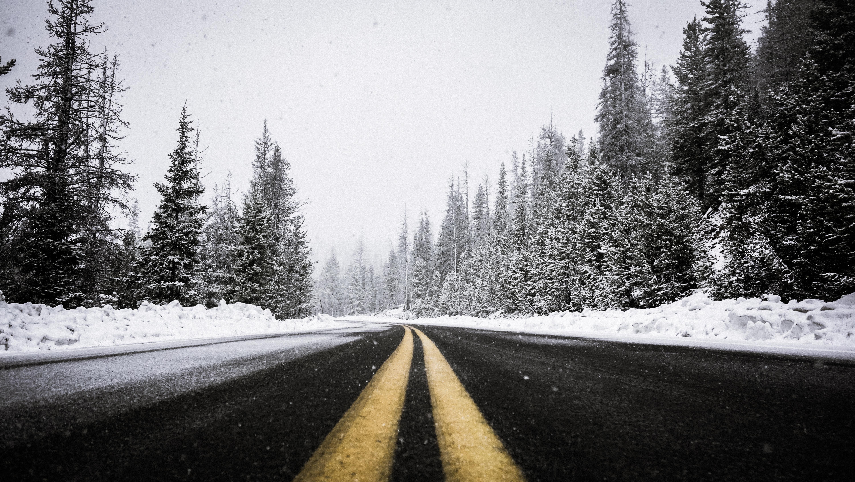 7 bonnes raisons de passer les fêtes en Laponie