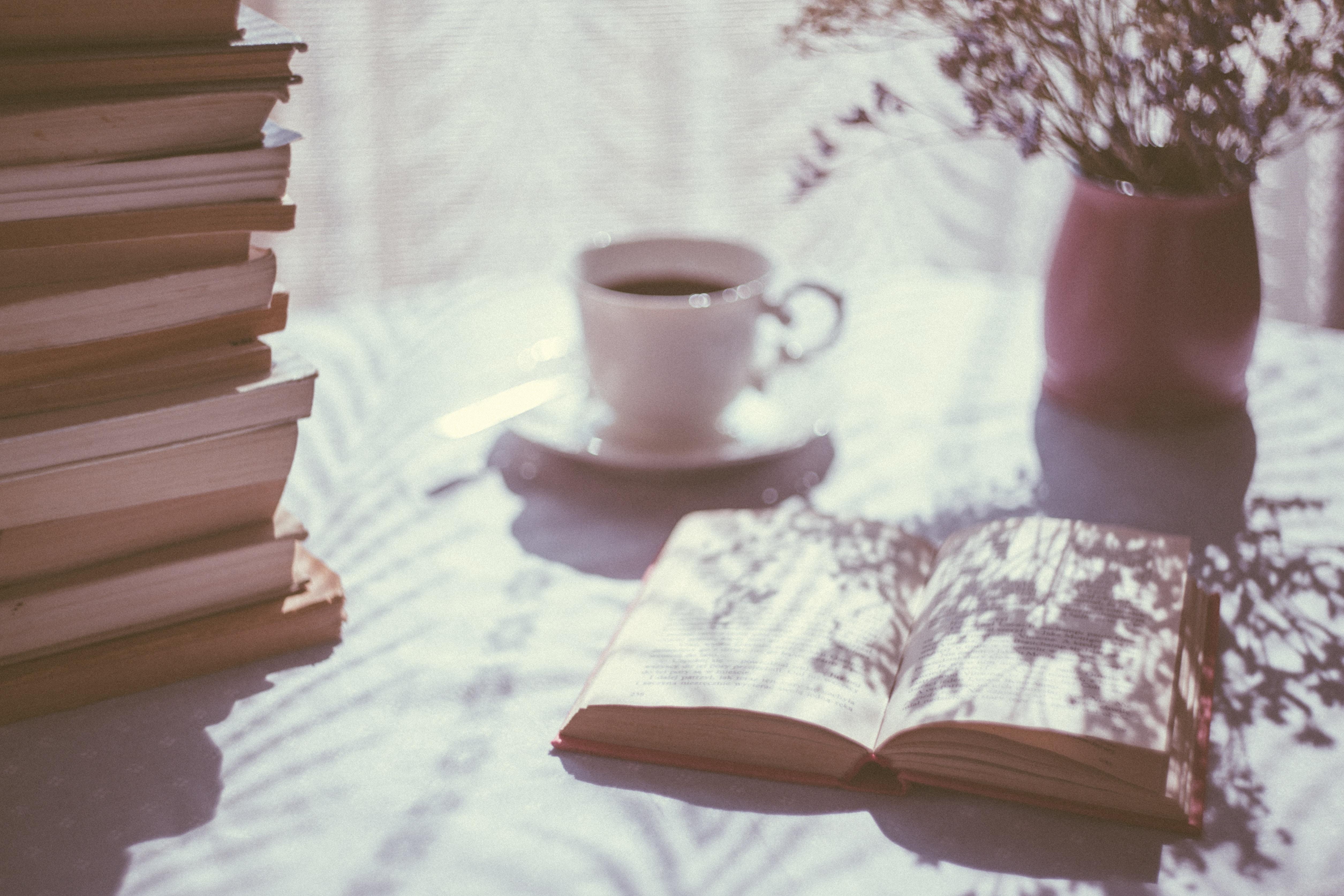 Sélection des livres à lire au mois de février
