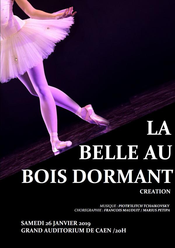LA-BELLE-AU-BOIS-DORMANT_3975565353280627980