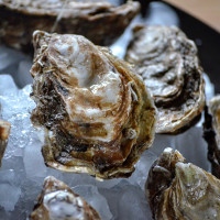 Huîtres spéciales de Claire de Veules-les-roses n°2 bourriche