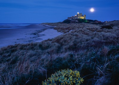 Bamburgh Castle, Super Moon and Cow Slip