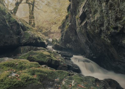 Upper Aira Force, Lake District