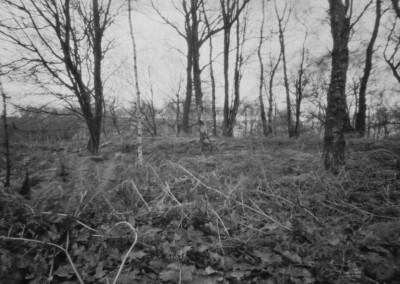 Stanton Moor I, near the Nine Ladies Stone Circle