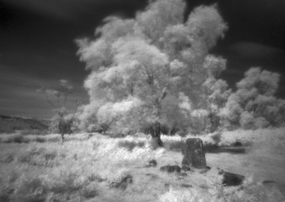 Froggatt Stone Circle, Peak District, Infra Red Pinhole