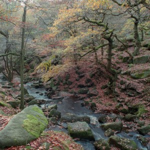 Padley Gorge and Burbage Brook