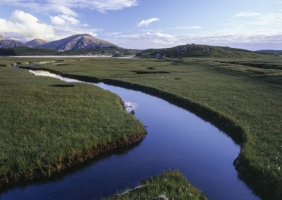 Uig Saltmarsh, Isle of Lewis, Outer Hebrides
