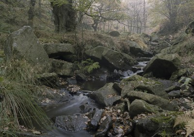 """Hidden Valley"", Peak District"