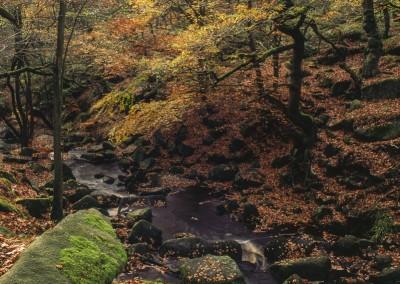 Padley Gorge15