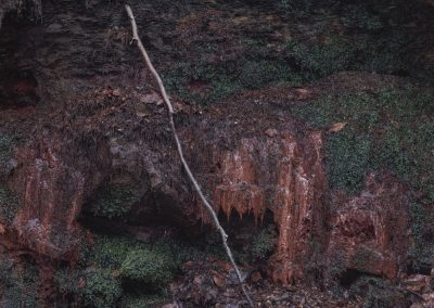 Point of Departure, Limb Valley