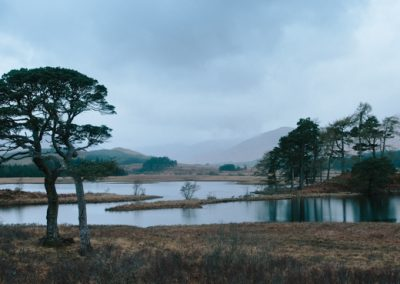 Loch Tulla and Trees, Scotland