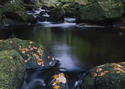 Padley Gorge, Peak District