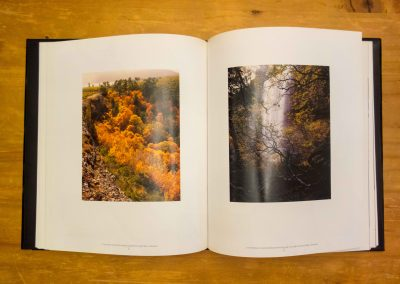 A-Year-in-Photobooks-34