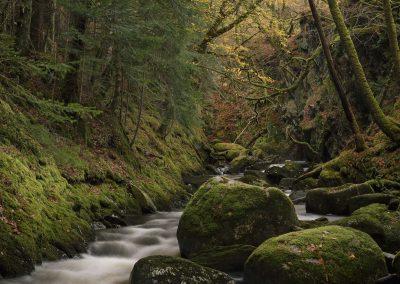 Abhainn Teithil, Sutherland's Grove, Argyll