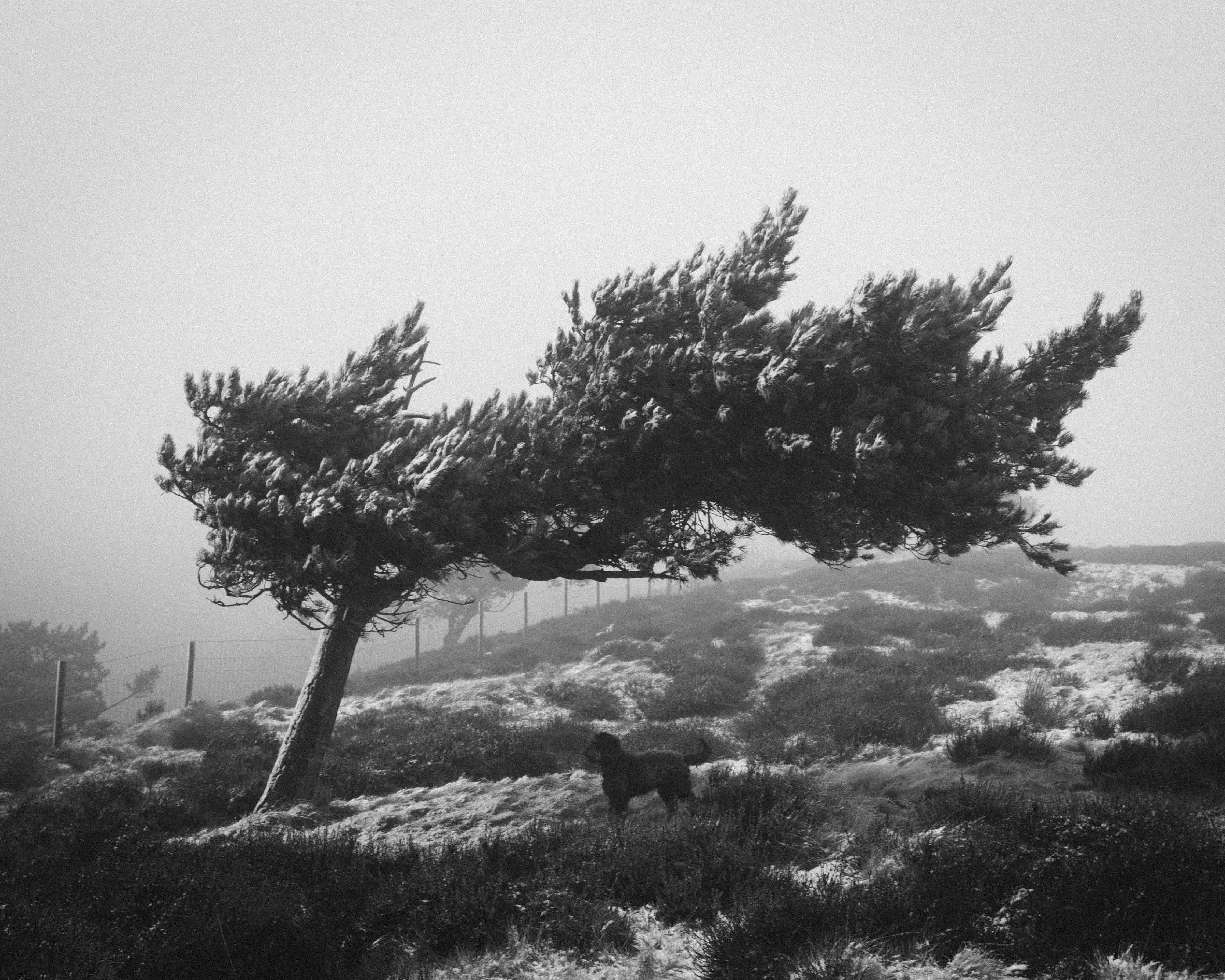 Black and white photography landscape photography from the peak district outer hebrides and scotland