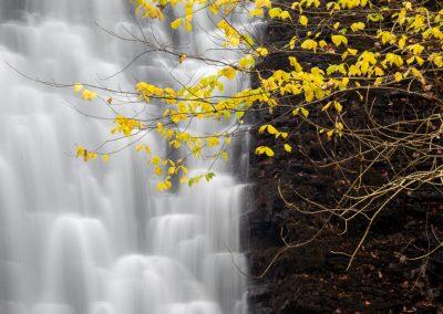 Falling Foss, North Yorkshire