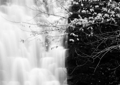 Falling Foss, North Yorkshire