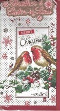 Christmas Brother & Sister in Law Card - Christmas Robins