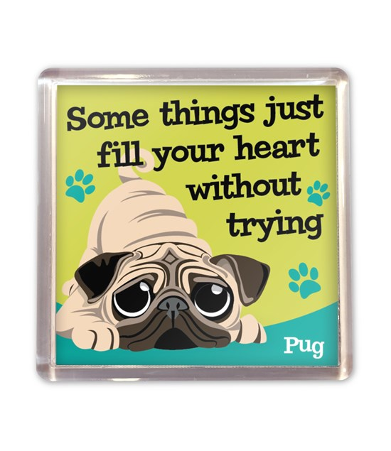Top Dog Pug Magnet