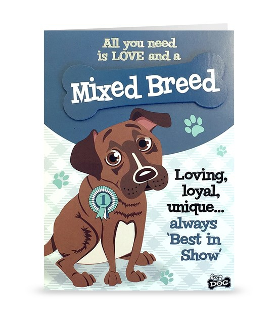 Top Dog Mixed Breed Greeting Card