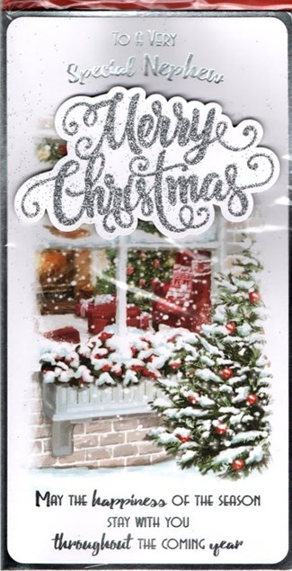 Christmas Nephew Card - Snowy Window Scene