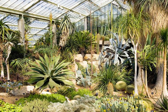 Gardens to visit in london this autumn alex head sisterspd