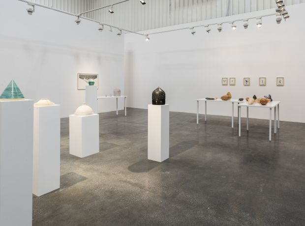Installation view of Shahpour Pouyan's solo exhibition 'PTSD', 2014. Courtesy Lawrie Shabibi and the artist..jpg