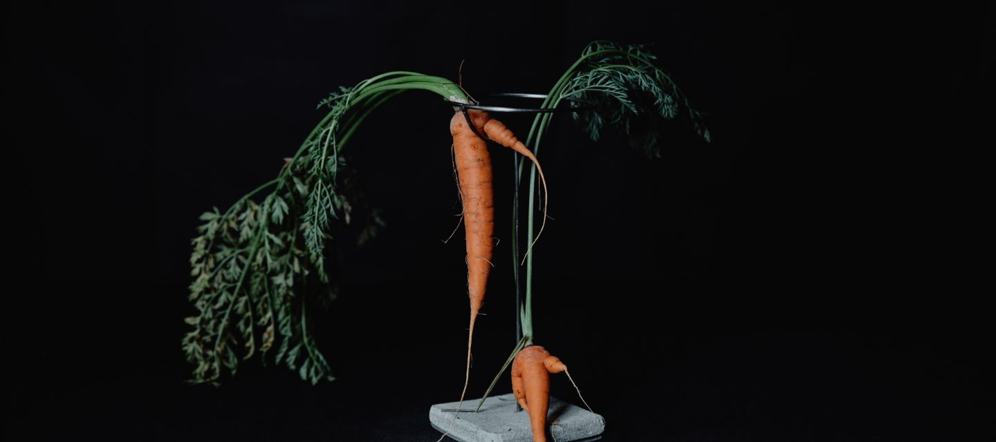 Dinner pop-up experience | 'Ugly Vegetables'