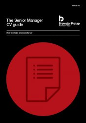 Senior Manager CV Guide