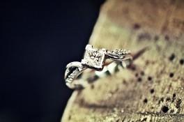 Compass Point Princess cut Diamond &diamond Set Shoulders