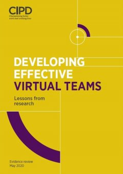 Developing Effective Virtual Teams