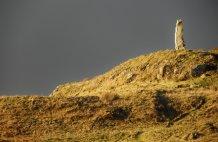 Standing Stone Dunvegan