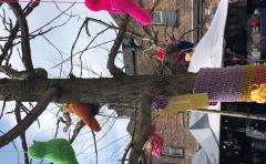Yarn Bomb Birds