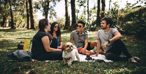 Friends in a park with a dog