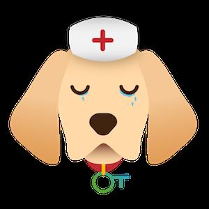 assurance-labrador