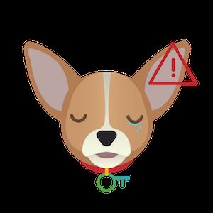 mutuelle-Chihuahua