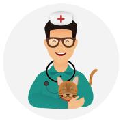 Assurance-santé-chat-Bengal