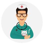 Assurance-santé-chat-Persan