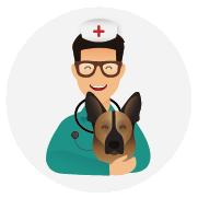 Assurance-santé-chien-Berger_Allemand