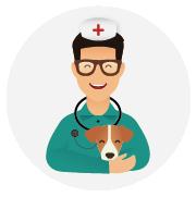 Assurance-santé-chien_Jack_Russel