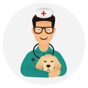 Assurance-santé-chien_Labrador