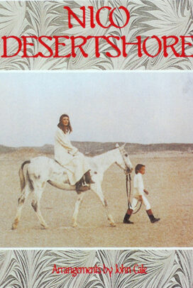 Desert Shore