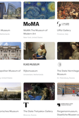 The Google Arts & Culture site where you can explore museums virtually
