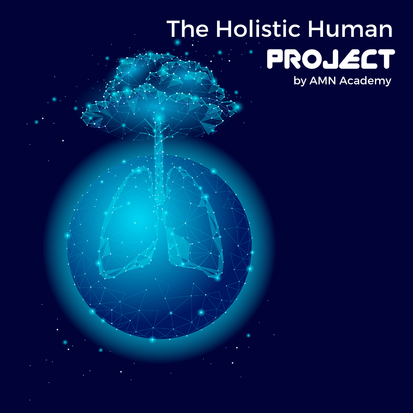 holistic human project podcast amn academy