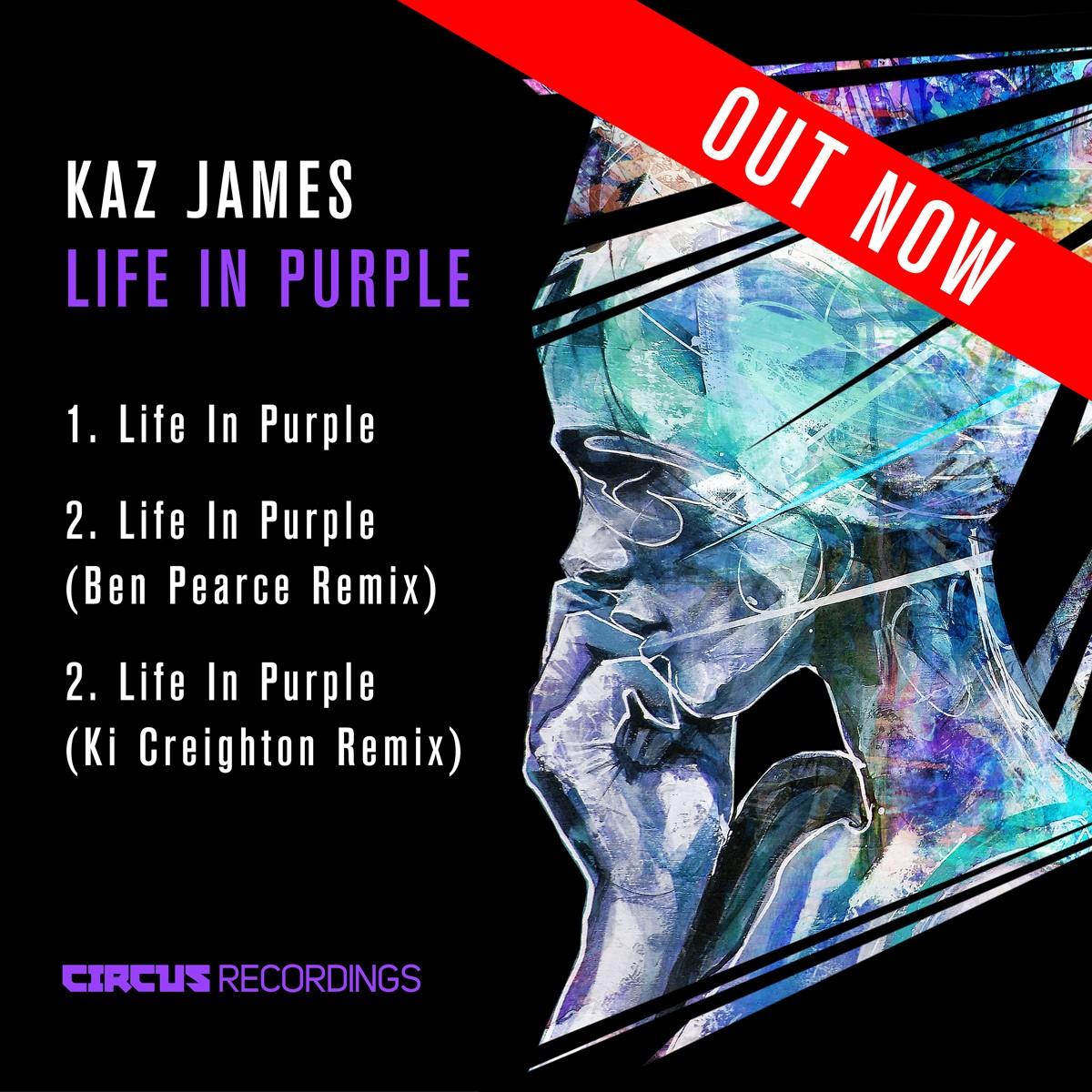 Kaz James - Life In Purple