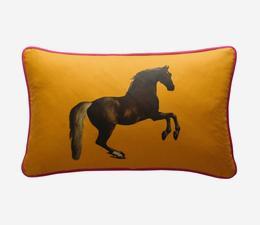 national_gallery_whistlejacket_orange_cushion_front_ACC2745_