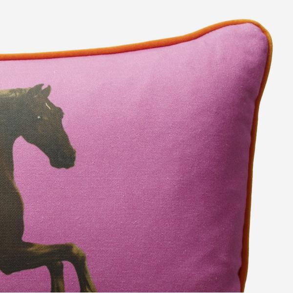 national_gallery_cushion_whistlejacket_pink