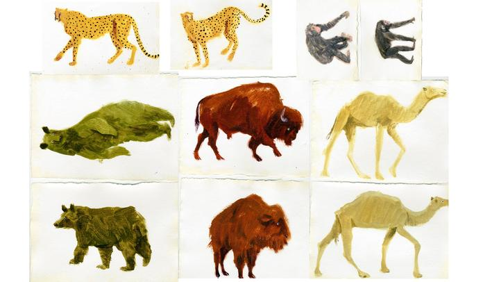 holly_frean_animal_watercolour_paintings_inspiration